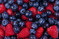 Free Mixed Berries Stock Image - 20048021