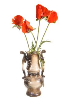 Poppies In A Vase Royalty Free Stock Photo
