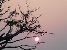 Free Sunset At Kerala Royalty Free Stock Image - 20040966