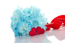 Blue Chrysanthemums With Two Red Hearts Stock Photography