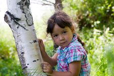 Free Girl And Birch Stock Photos - 20042913