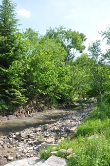 Free River Royalty Free Stock Image - 20043446