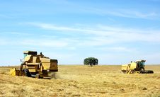 Free Combine Harvesting Wheat In  Field. Royalty Free Stock Photography - 20046387