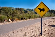 Free A Bright Yellow Cow Sign Stock Images - 20046954
