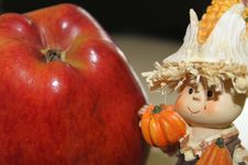 Free Apple And Gnome Royalty Free Stock Photos - 20049498