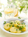 Free Salad Stock Images - 20055504