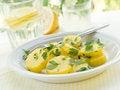 Free Salad Royalty Free Stock Image - 20055516