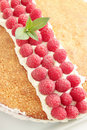 Free Cake With  Raspberries Royalty Free Stock Images - 20057439