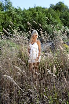 Free Girl Are Standing In Dry Grass Stock Image - 20051701