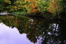 Free Fall Colors Reflected In A Creek Stock Photography - 20053672