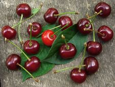 Free Cherry Fruits Stock Photography - 20054292