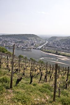 Rhine Valley, Germany Stock Images