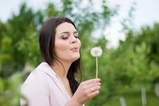 Free Spring Styled Girl With Dandelion Stock Photography - 20055942