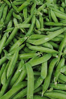 Free Fresh Peas Stock Photo - 20055950