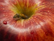 Free Apple Closeup Stock Photos - 20056073