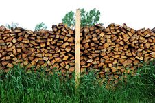 Free Wood Logs Royalty Free Stock Image - 20056626