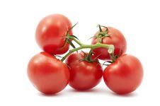 Free Tomatoes Stock Photo - 20057340