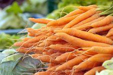 Free Fresh Carrots Stock Photography - 20058132