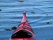 Free Sea Kayaks On The Beach Royalty Free Stock Photography - 20059637