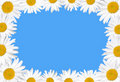 Free Beautiful Floral Frame Stock Photo - 20067390