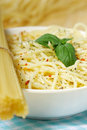 Free Pasta Royalty Free Stock Photos - 20068418