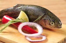 Free Fresh Trout Stock Photo - 20060790
