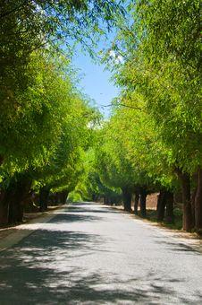 Free Road Stock Photo - 20062260