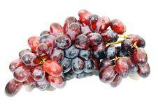 Free Grape Stock Photography - 20062272