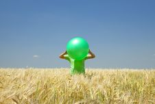 Free Men With Green Ball At Wheat Field. Stock Photos - 20063823
