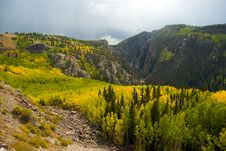 Free Foliage In The San Juan Mountains Royalty Free Stock Images - 20064059