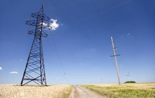 Electrical Net Of Poles At Wheat Field Royalty Free Stock Photos