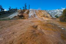 Free Travertine Terrace, Mammoth Hot Springs, Yellowsto Stock Photo - 20064800