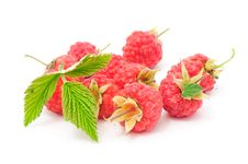 Free Red Raspberries With Green Leaf Royalty Free Stock Images - 20065369