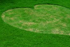 Free Image Of Fresh Spring Green Grass, Heart Shape. Royalty Free Stock Photo - 20065675
