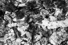 Pile Of Grey Ashes From The Burned Wood Royalty Free Stock Images