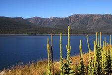 Free Scenic Landscape Stock Photos - 20069633