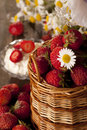 Free Strawberries In A Basket Royalty Free Stock Photography - 20079997