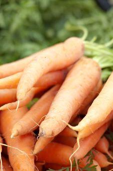 Free Fresh Carrots Royalty Free Stock Photography - 20070827