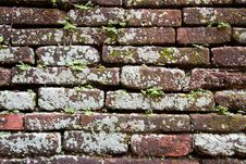 Free Old Brick Royalty Free Stock Images - 20073729