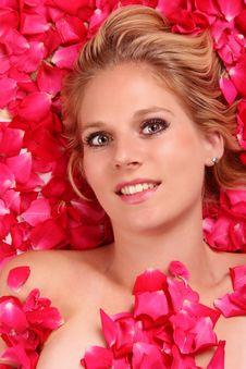 Free Roses Sleeping Royalty Free Stock Photo - 20074465