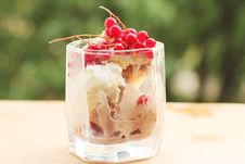 Free Ice Cream With Red Currants Royalty Free Stock Image - 20075876