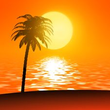 Free Sunset Palm Stock Images - 20075914