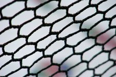 Free Net Stock Images - 20076114