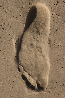 Free Sand Footprint Stock Images - 20076364