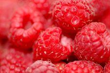 Free Raspberries Stock Photography - 20079682