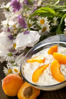 Free Cottage Cheese Royalty Free Stock Photography - 20079967
