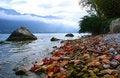 Free Autumn On Lake Stock Photography - 20088072