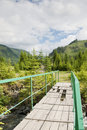 Free Eco Tourism Trail In Romanian Mountains Stock Images - 20088104