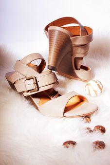 Free Elegant Sandals Stock Photos - 20080593