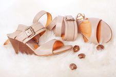 Free Elegant Sandals Royalty Free Stock Photography - 20080627